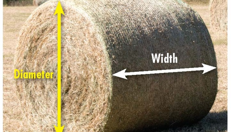 What do your hay bales weigh? | Hay and Forage Magazine