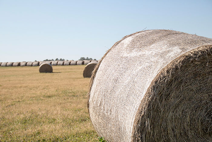 That's a wrap | Hay and Forage Magazine