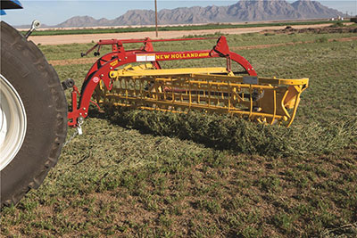 Which rake takes the cake? | Hay and Forage Magazine
